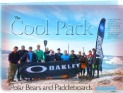 polar bears and paddleboards