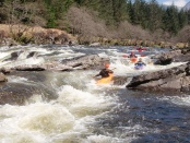 andy holt coaching