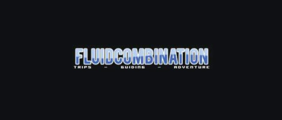 fluid-comb-logo