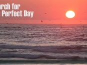 Search for the perfect day