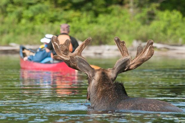 Canoe Culture Legacy