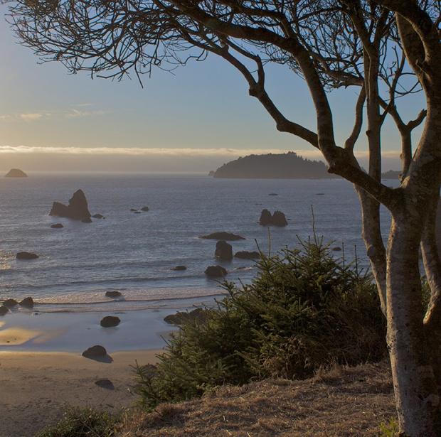 Northern California by Jason Self