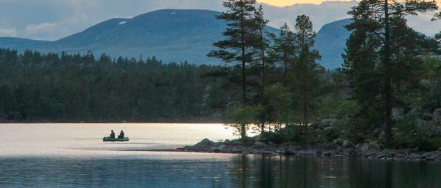 Rogen, Sweden