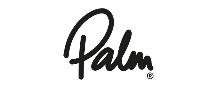 Palm Equipment logo